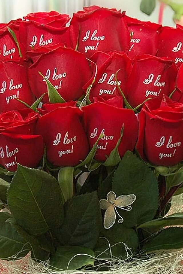 Розы картинки с надписями для девушки