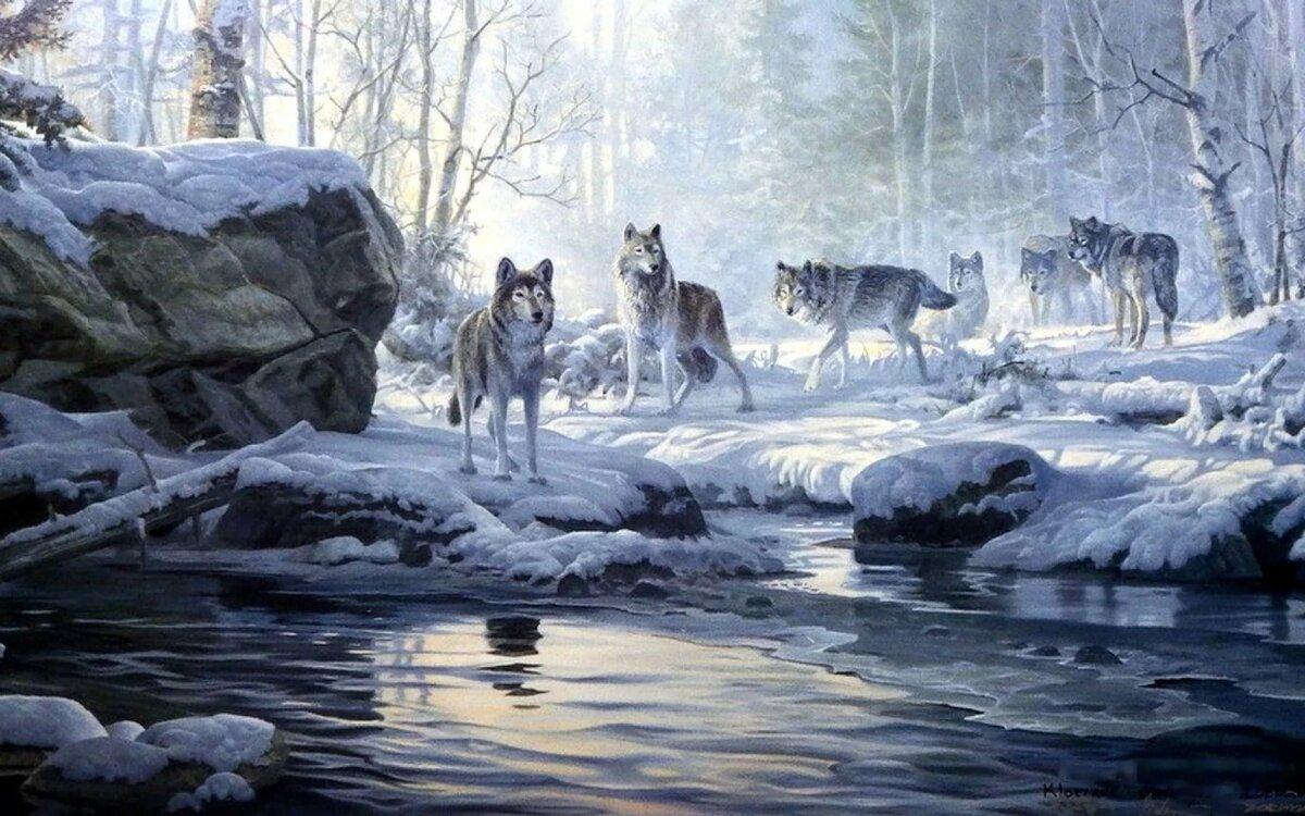 Волки зима пейзаж картинки круг нужного