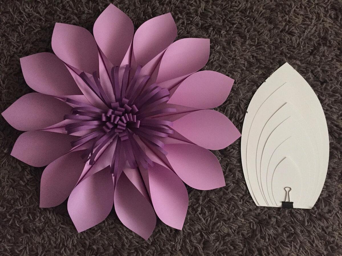 бумажные цветы на стену своими руками шаблоны образом