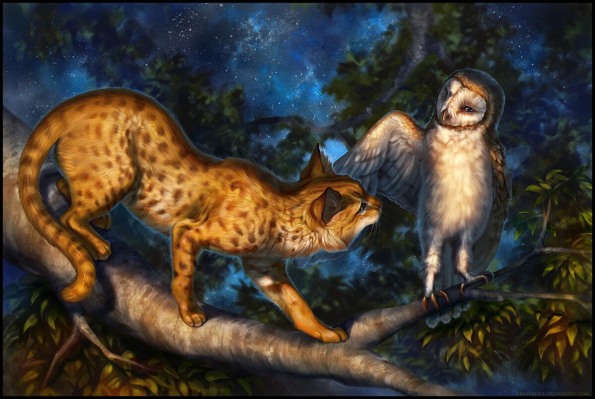 картинки тигров с совами того