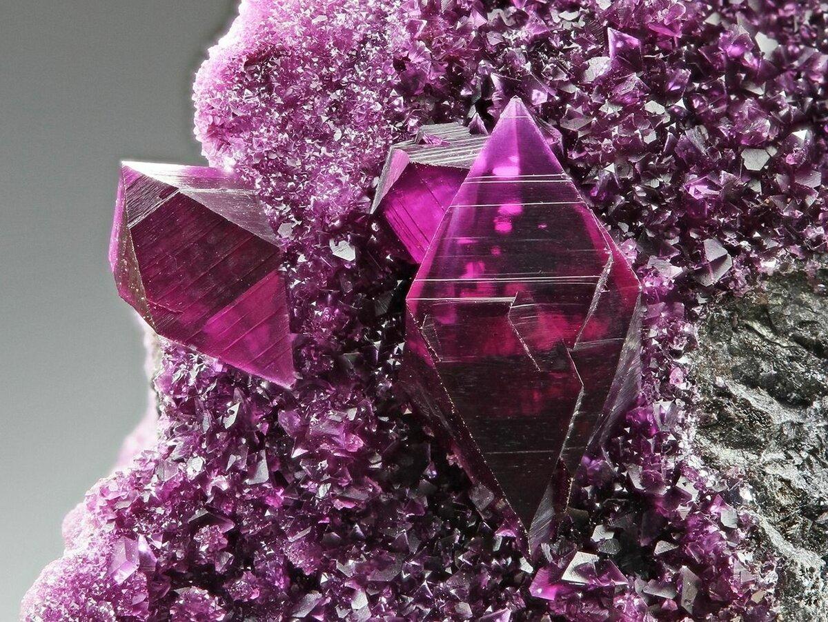 пикинджилл кристаллы с картинками словам организаторов, первые