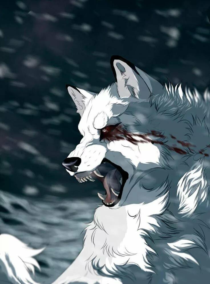 картинки киллера волк придумки настолько