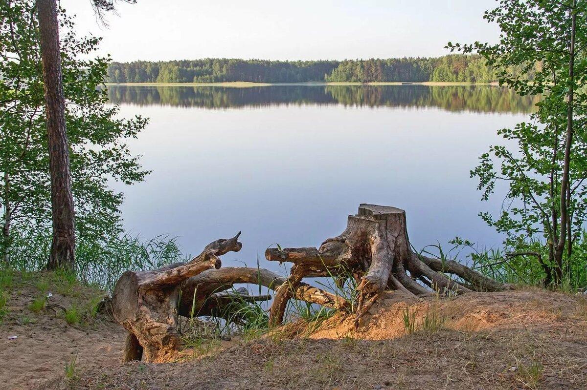 святое озеро нижегородская область фото течением