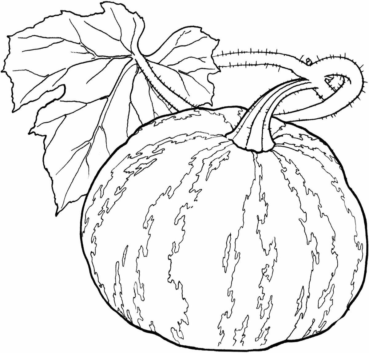 Раскраска картинки овощи и фрукты для детей