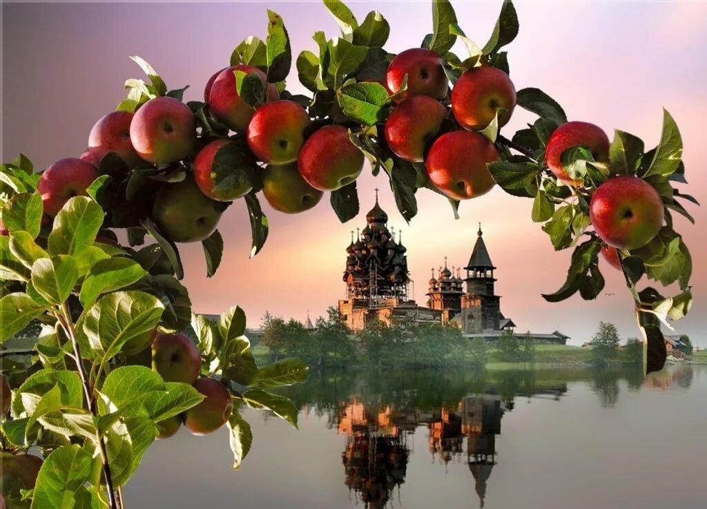 Яблочный спас картинки для объявления