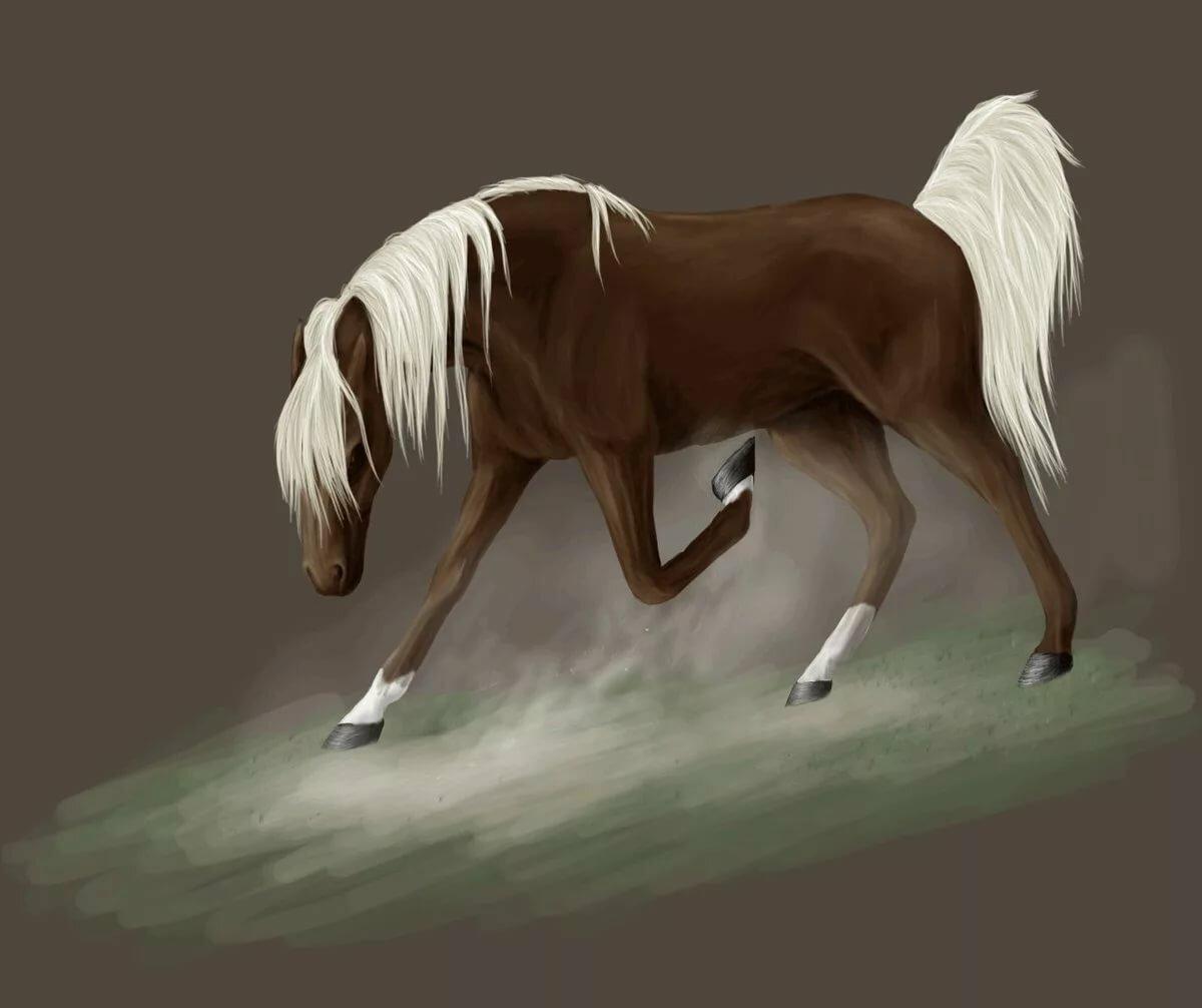 живые картинки которые двигаются животные лошади наши