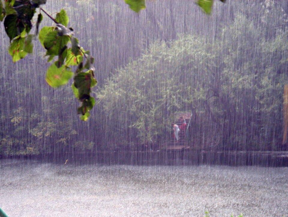 Холодное дождливое лето картинки