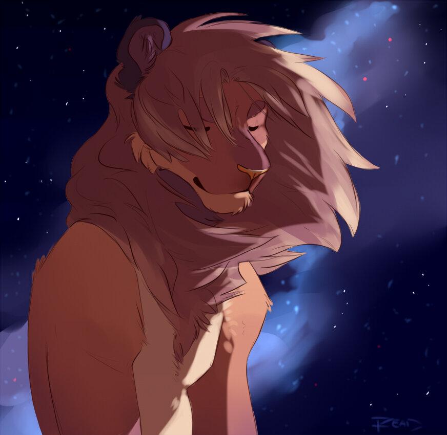 картинки фурия льва
