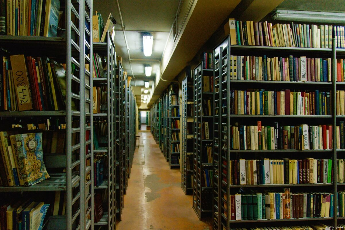 Библиотека игр картинки
