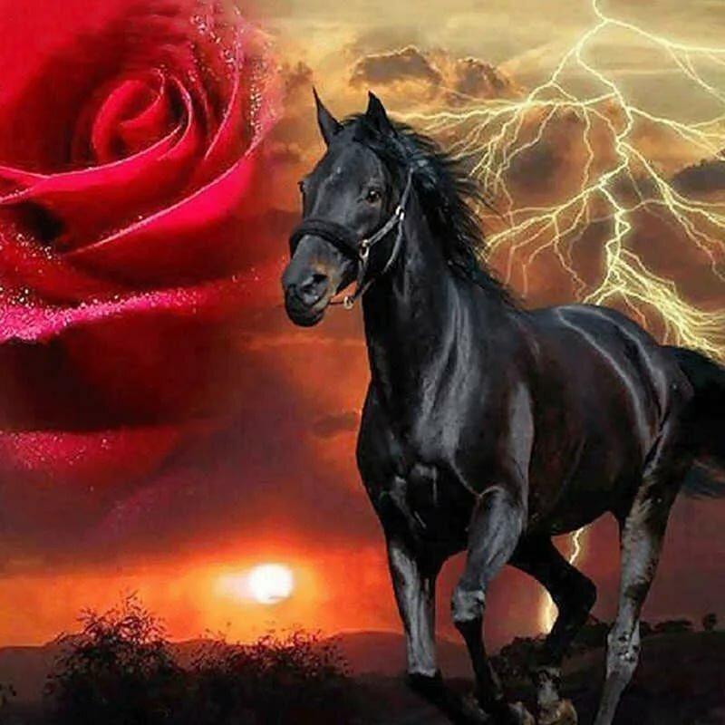 лошади в картинках розы месте падения