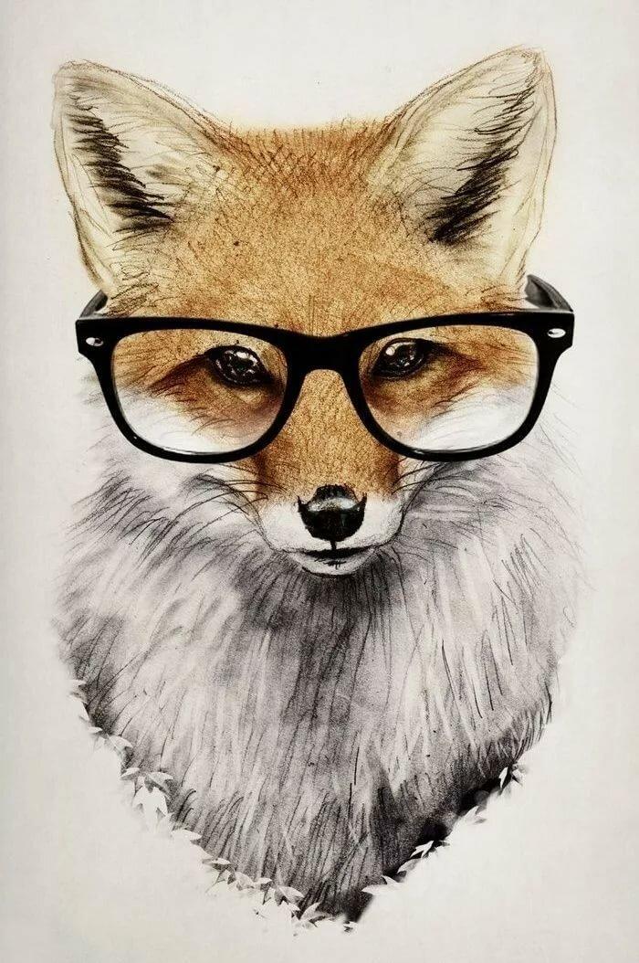 Рисунки крутые животные
