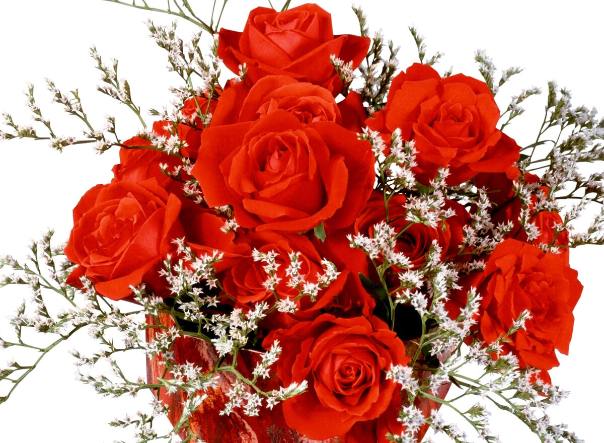 Плейкаст картинки цветов