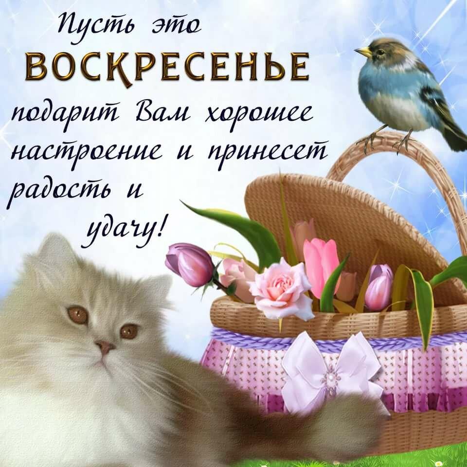 Поздравления с тридцатилетием со дня рождения производства климовского