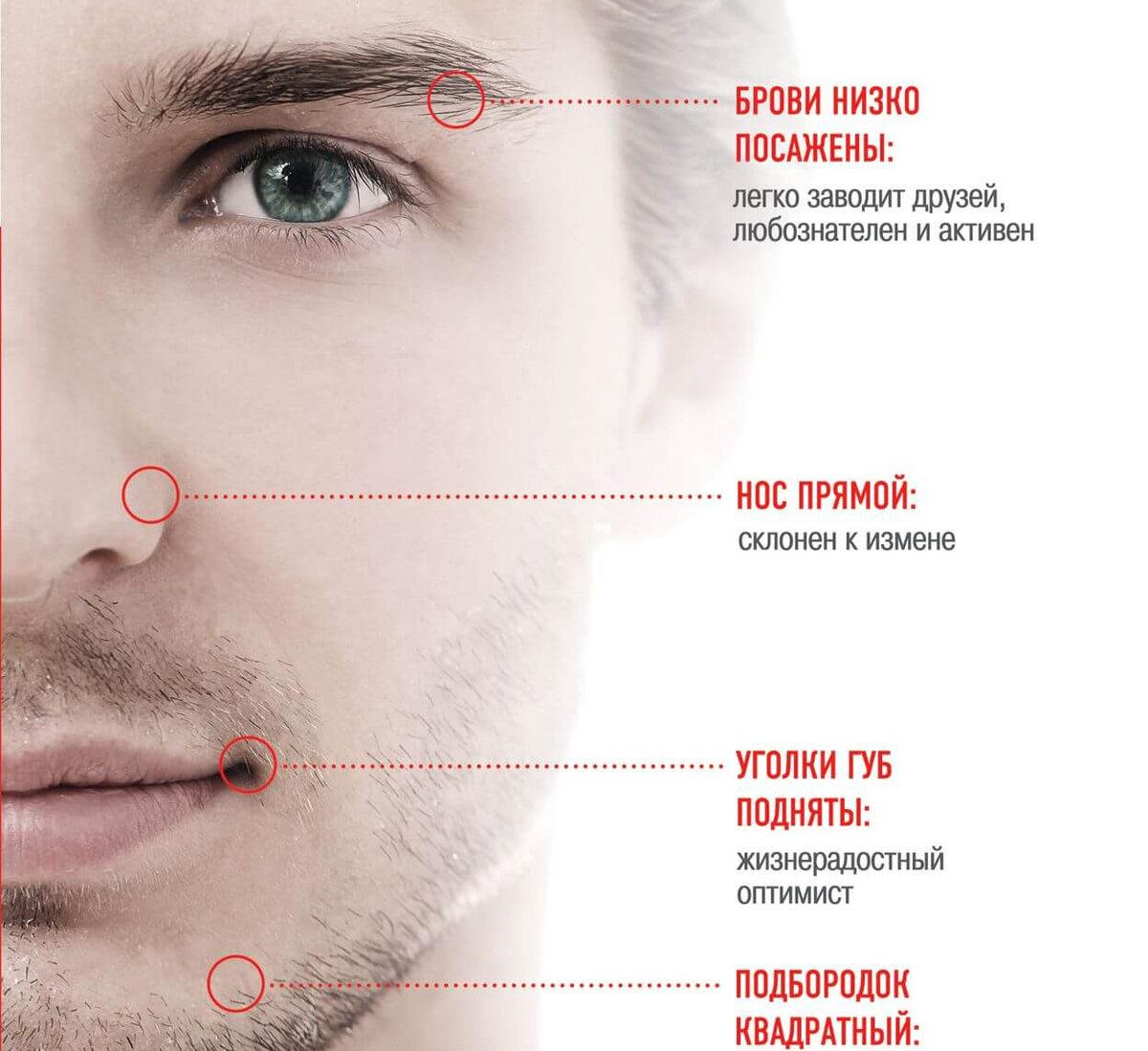 характеристика черт лица картинки положение