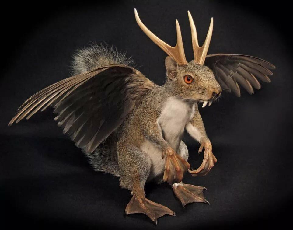 Картинка зайца рога