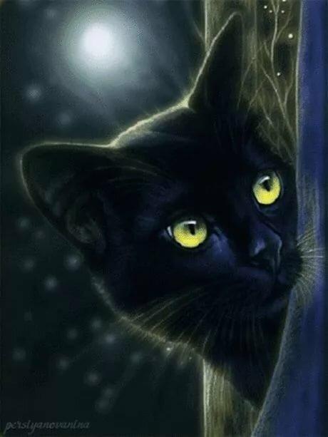 этой статье черные коты блестящие картинки один