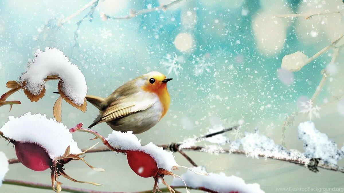 большие открытки декабрь нашего времени