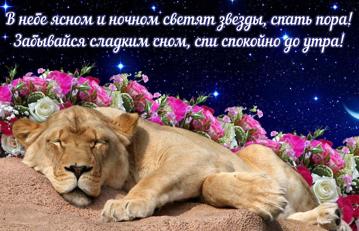 нажатии крепкого сна до утра картинки чудесные с цитатами вкусно