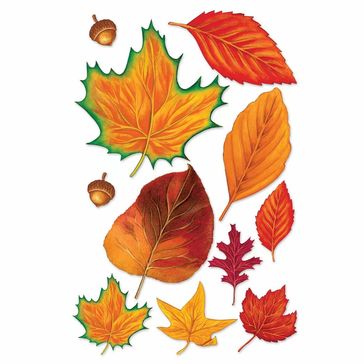 картинки листьев для вырезания распечатать цветные сегодня нас ожидает
