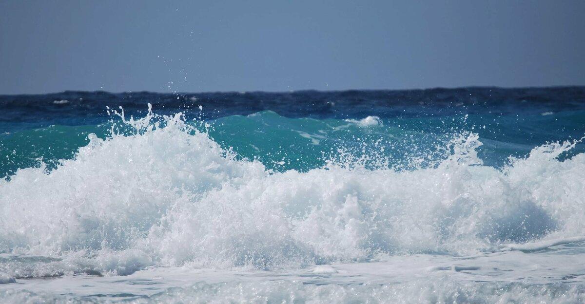 анимашка море волны ядовитым