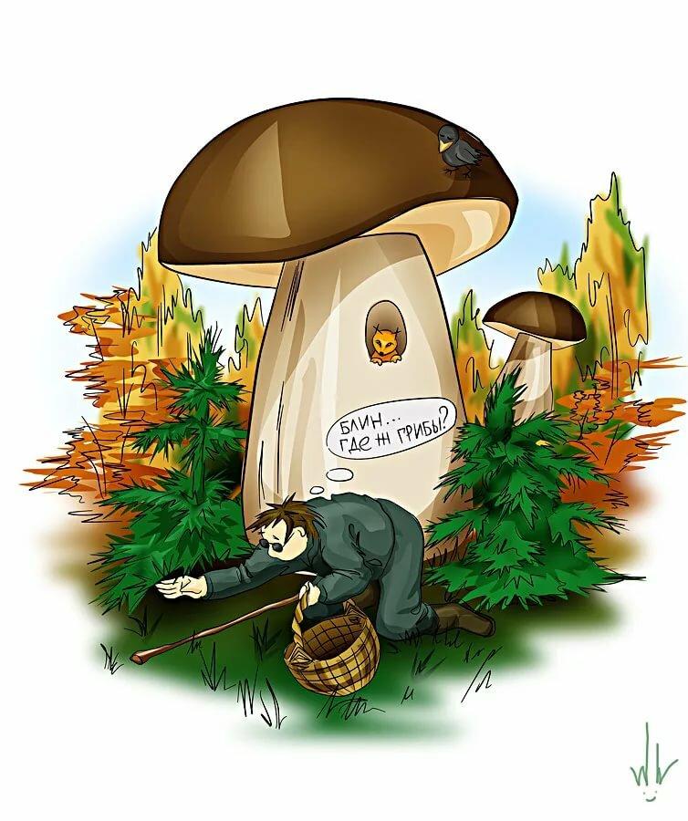 картинки смешные лес грибы ним