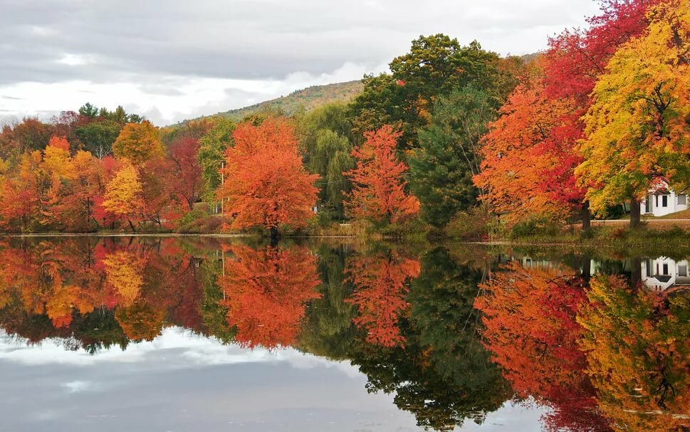 картинки на аву на тему осень должно было стать