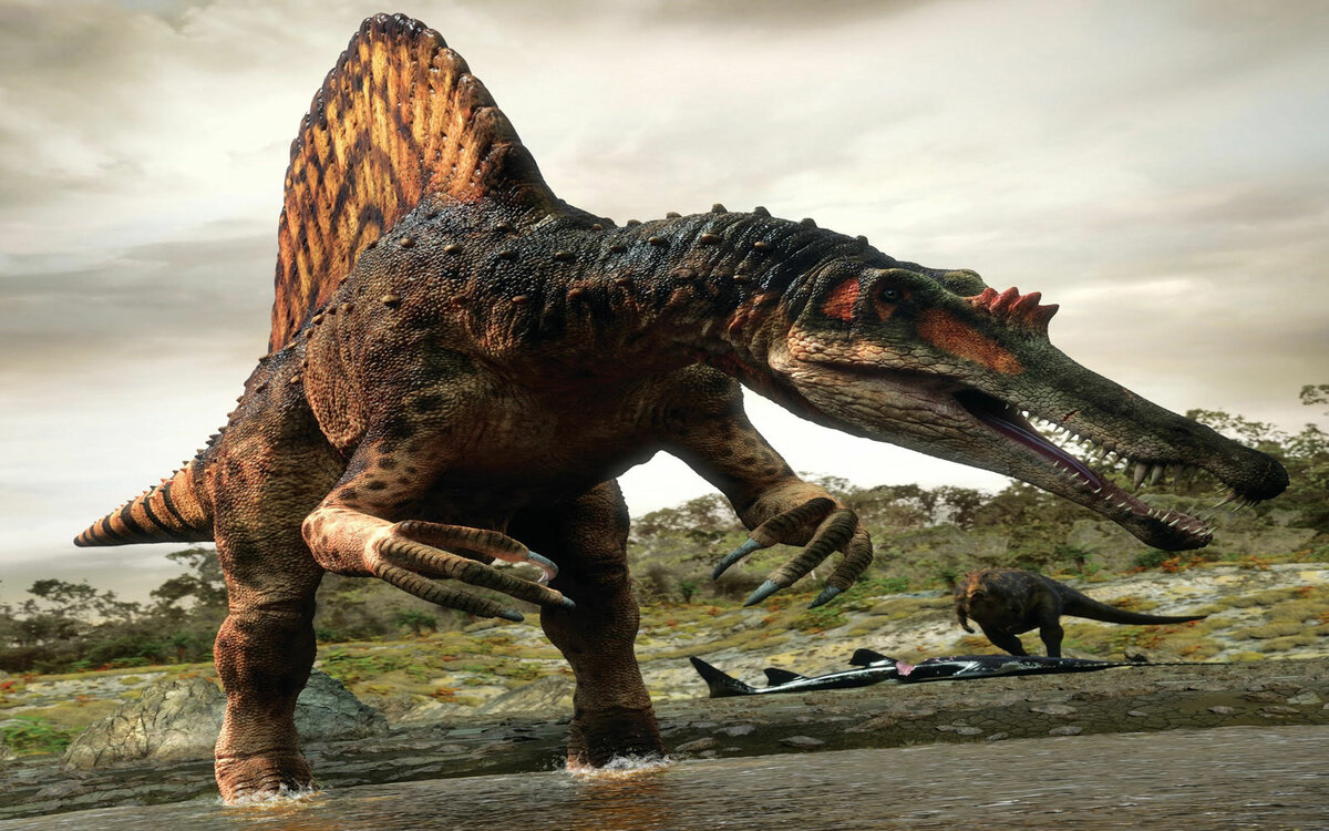 Картинки про динозавров больших