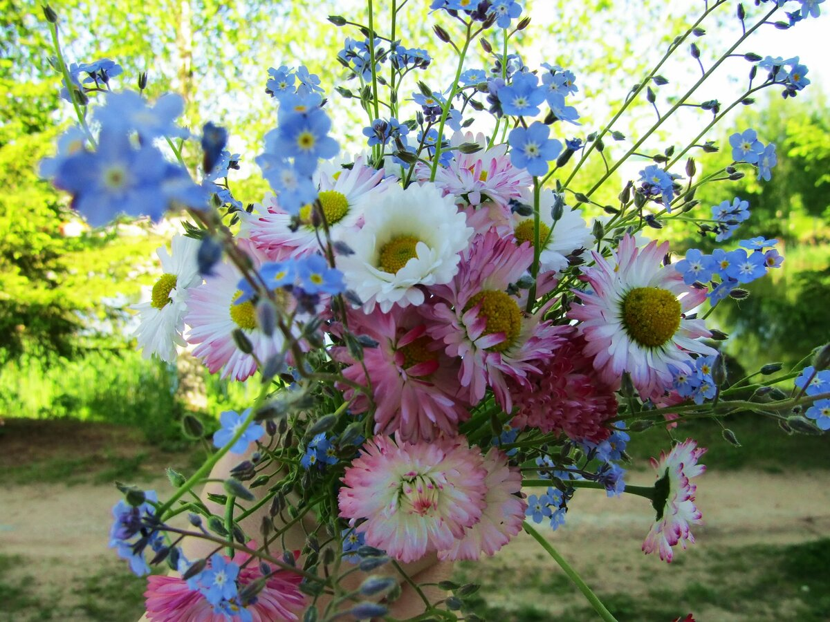 Картинка летний букет цветов фото