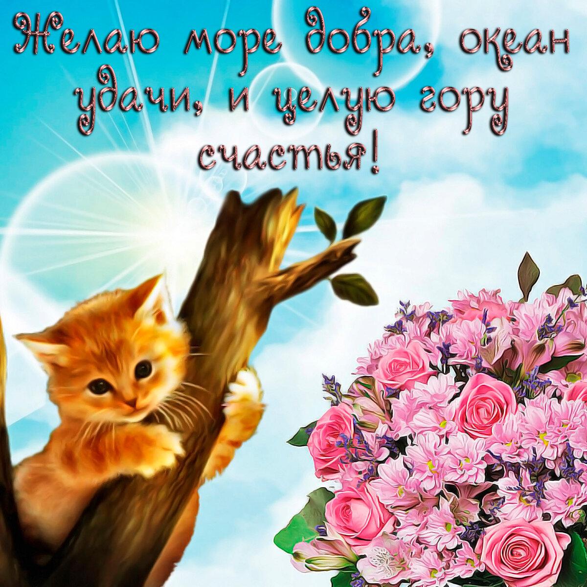 счастья любви хорошего настроения картинка