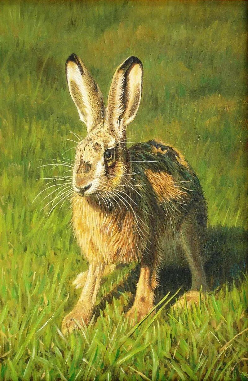 картина с зайцами задача