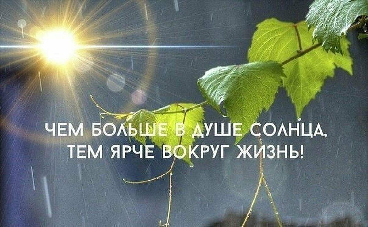 Ты солнца свет стихи