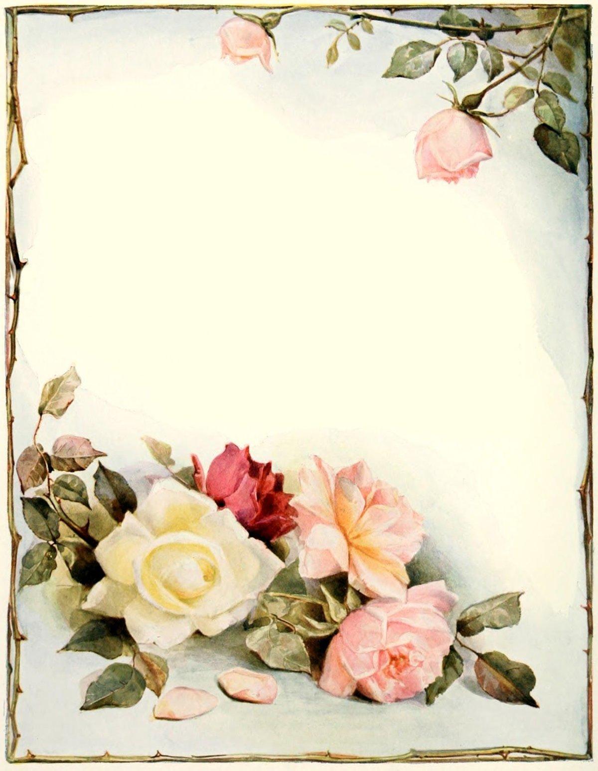 Поздравления картинках, пустые бланки открыток