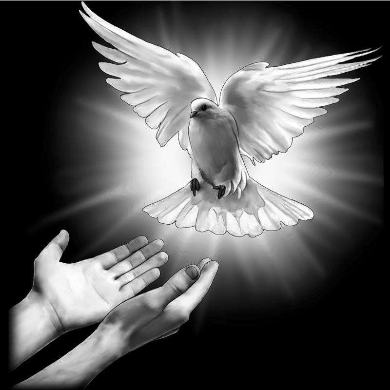 Картинка на обороте памятника жизнь человека увлекавшегося голубями