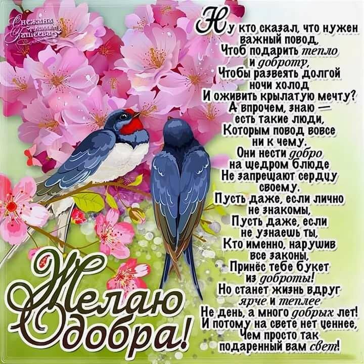 Пожелания мира счастья и добра в открытке