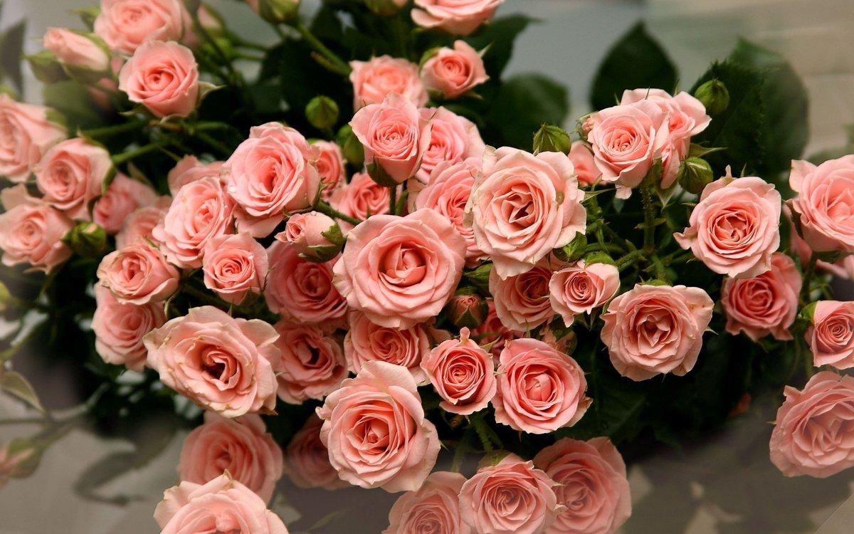 Открытки, самые красивые картинки поздравления в цветах