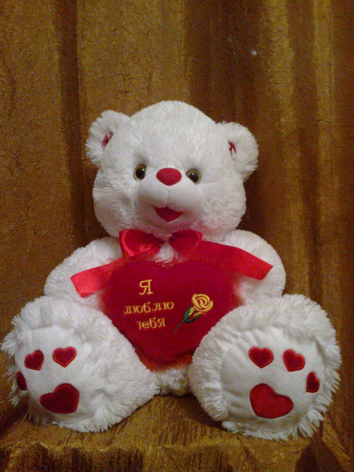 картинка медвежонок я тебя люблю животное заползает