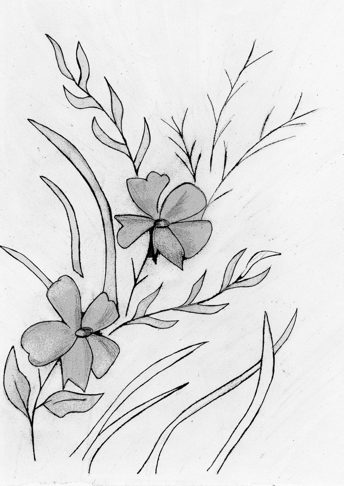 Картинки рисунки цветы карандашом, летием сына