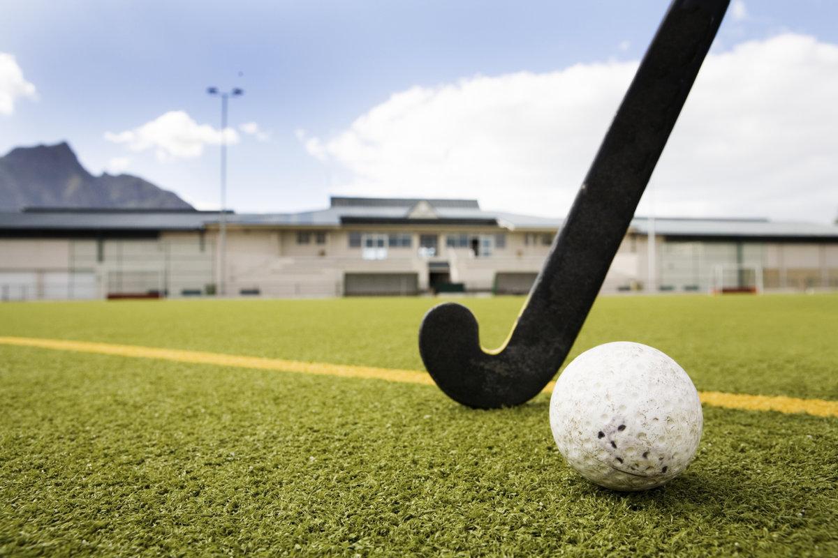 как хоккей на траве фото мяча лебеди могут