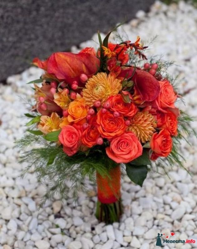 Букет каллы альстромерии, ставрополь доставка цветов по городу