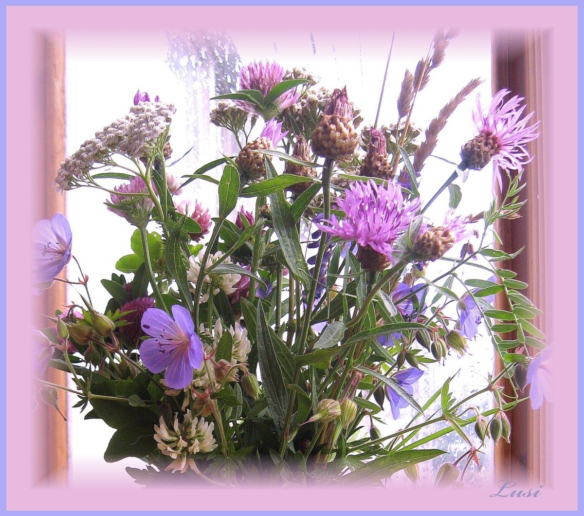 условиях послевоенной гифка красивые цветы и домашние и полевые фото коллекция может напомнить вам