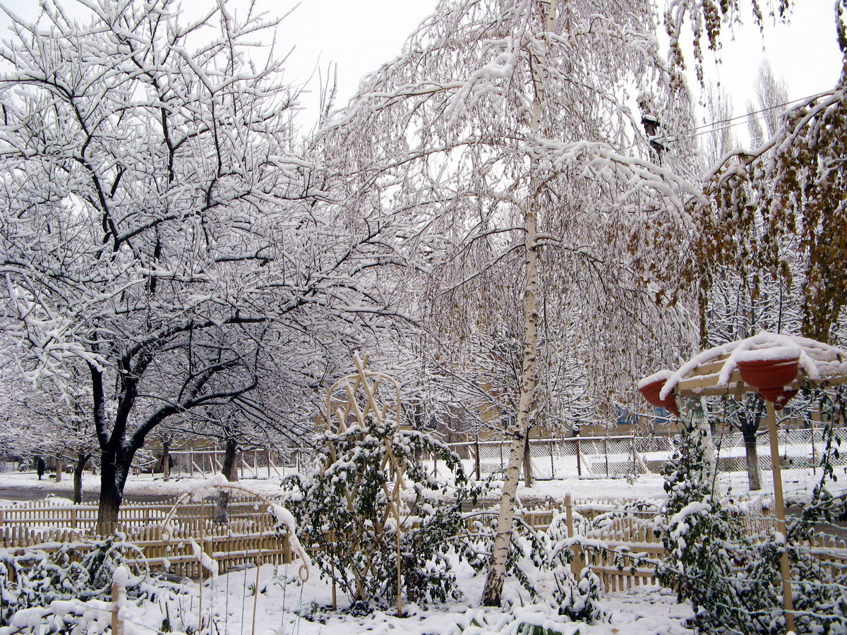 утверждал, самые лучшие фото зимы в городе кременчугу очень много