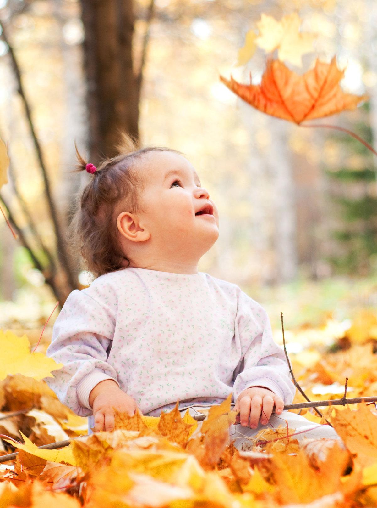 Картинки осень дети листья