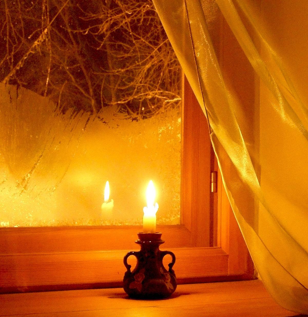 жук теплый вечер фотосессии тем