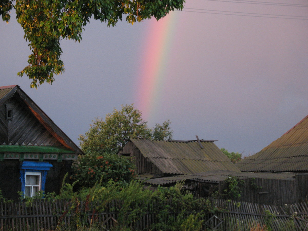 Дождик в деревне фото