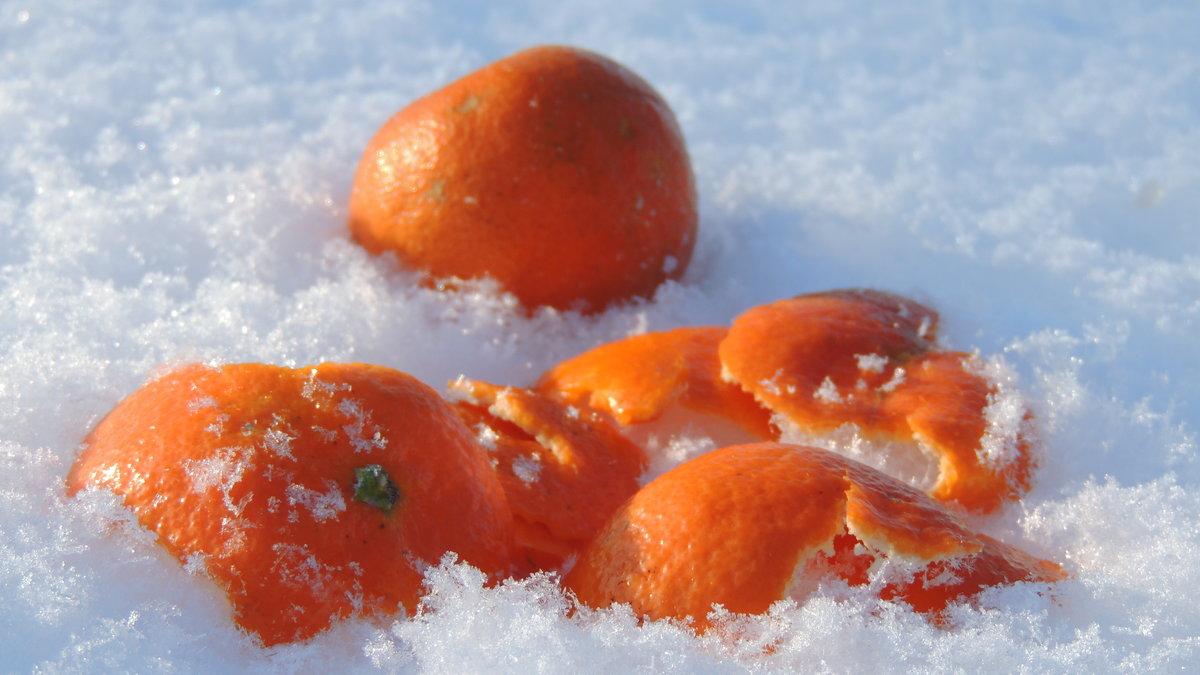 потому, картинки апельсины на снегу изготовить лодочный мотор