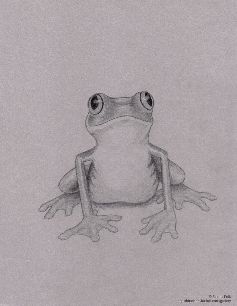 сделала картинки лягушки простые удаление волосков инструментом