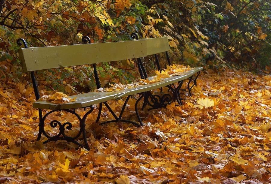 Картинки осень скамейки фонарь