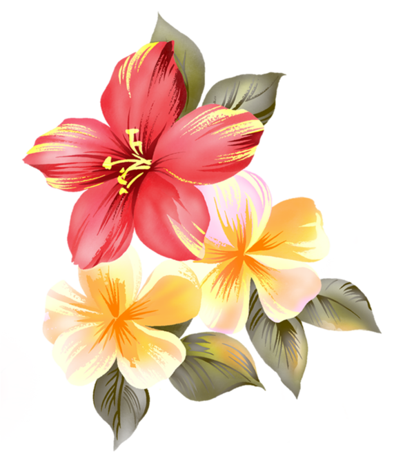 Картинки с прозрачным фоном цветы