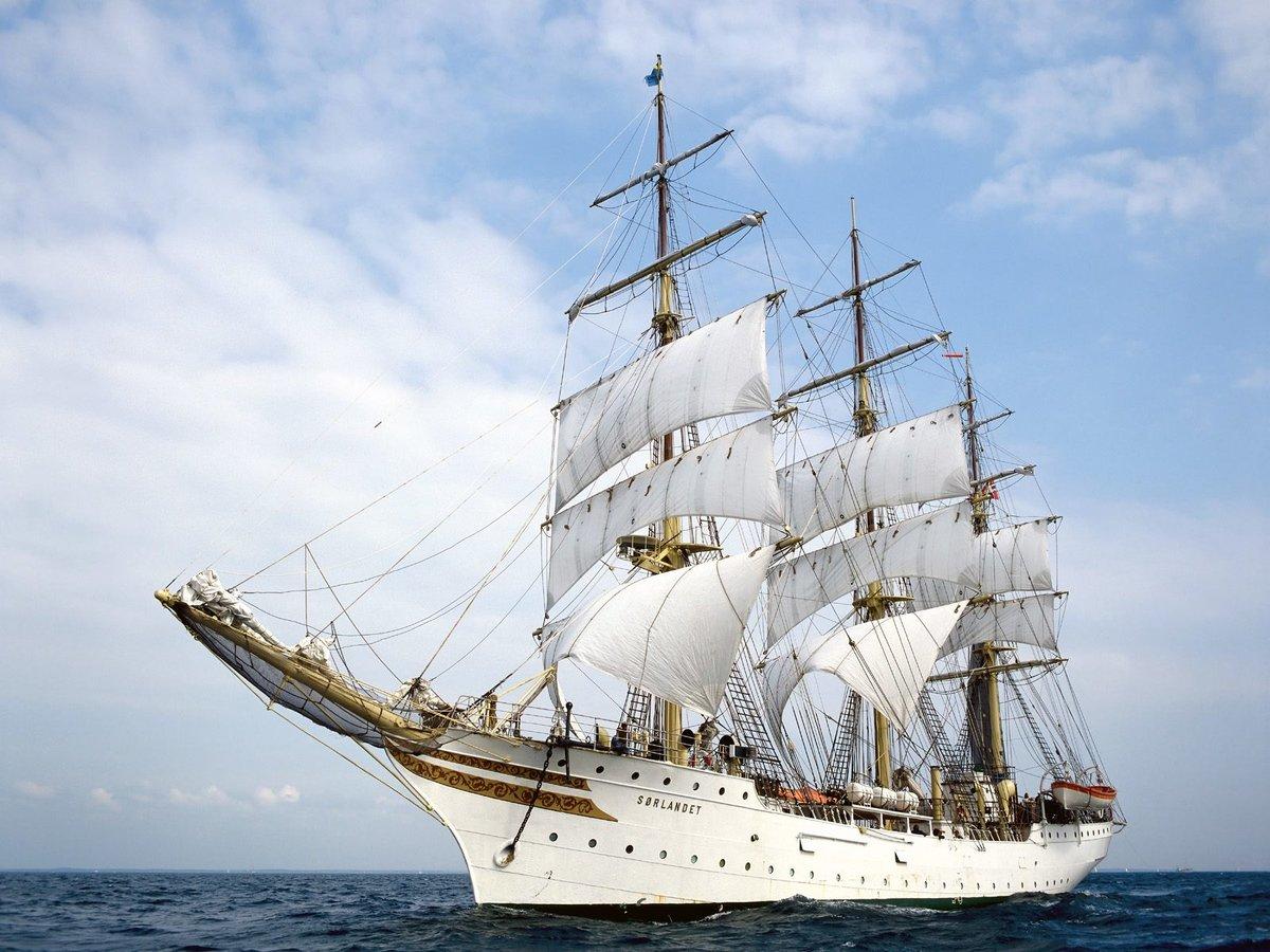 Тюлень, картинки поздравление корабли