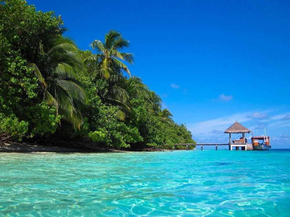 маникюр райские острова картинки смотреть окружает